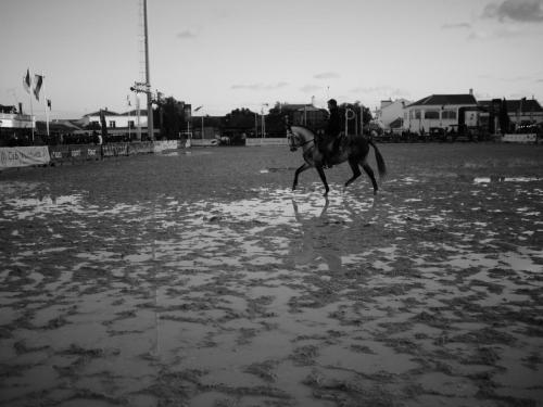 Golegã's National Horse Fair 7